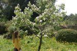 Les Jardins de l'Espérance à La Ciotat